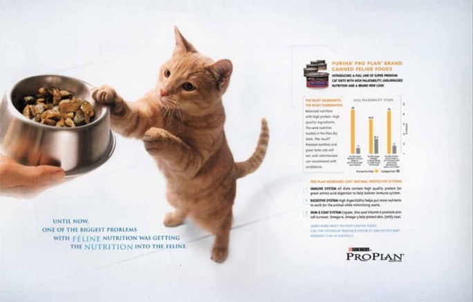 ProPLan Spread ad with Kitten